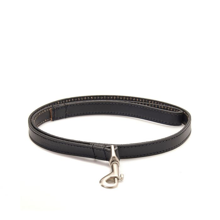 B.Intl Leather Dog Lead