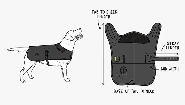 dog accessories size guides barbour international Dog Behavior Diagram